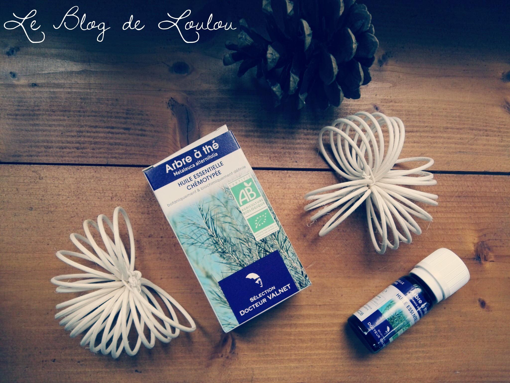 L huile essentielle d arbre th tea tree le blog de - L huile essentielle d arbre a the ...