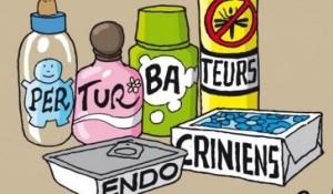 perturbateur-endocrinien