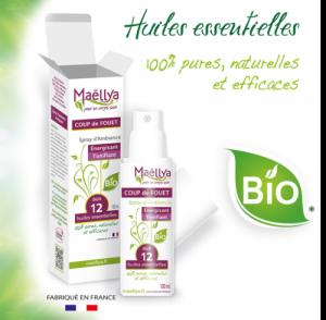 Spray-coup-de-fouet-logo-bio-asterix-500x490